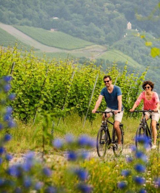 Bernkastel-Kues_Pärchen_auf_dem_Fahrrad