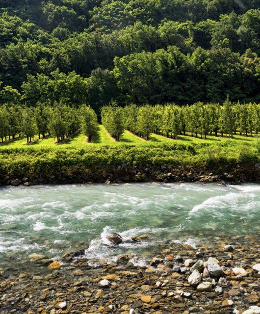 Lombardia - Valtellina