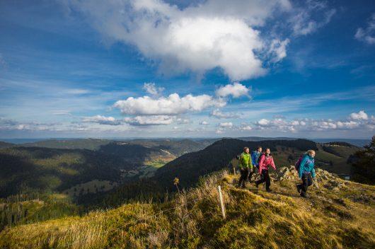 Foresta Nera © Hochschwarzwald Tourismus GmbH - Dand Schultheiss